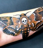 insect-tattoo-butterfly-with-scull