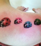 insect-tattoo-lady-bug-tattoo-design-on-shoulder