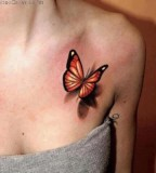 realistic tattoo butterfly shoulder tattoo
