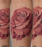 realistic tattoo ppink rose