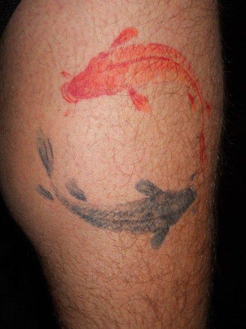 watercolor tattoo design koi fish yin yang