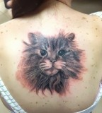 fluffy cat tattoo on back