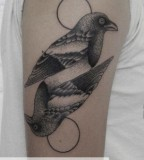 pigeons symetric tattoo by valentin hirsch