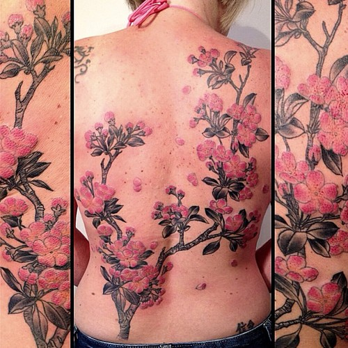 cherry blossoms tattoo by victor j webster