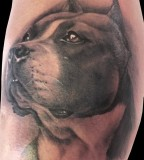 Awesome dog tattoo by Matteo Pasqualin