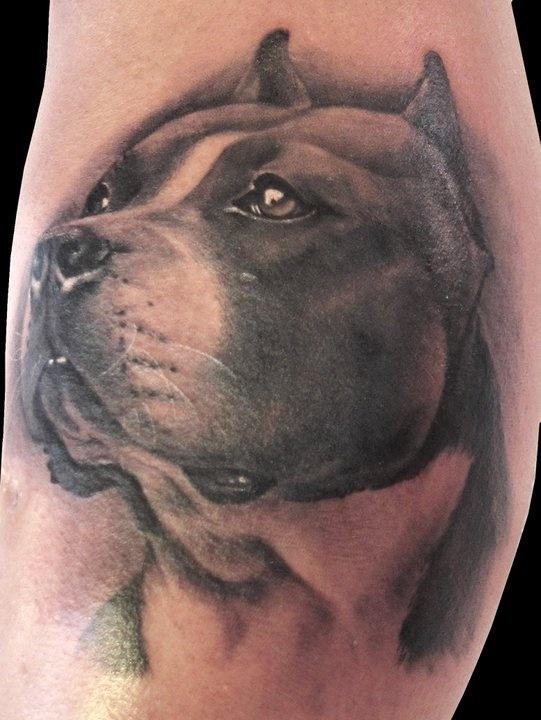 Awesome dog tattoo by Matteo Pasqualin