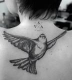 Bird tattoo by Andrey Svetov
