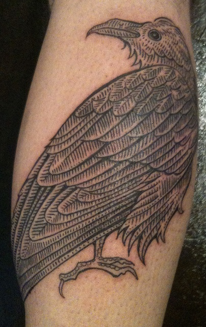Bird tattoo by Duke Riley