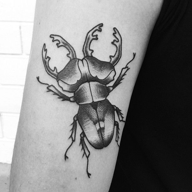 Black and white insect tattoo by Philippe Fernandez