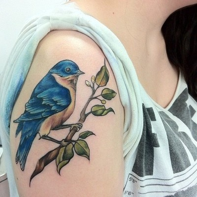 Blue birs tattoo on shoulder