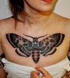 Butterfly Marcin Aleksander Surowiec tattoo