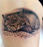 Cat tattoo by Matteo Pasqualin