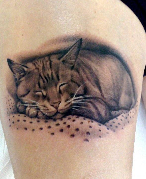 Cat tattoo by Matteo Pasqualin