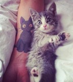 Double cats tattoo