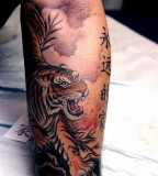 Tiger tatoo on arm
