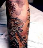 Tiger tatoo on arm