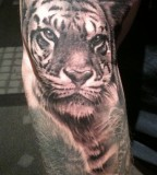 Tiger tattoo by Bob Tyrell