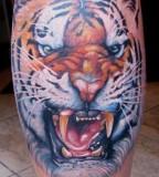 Tiger tattoo by Miroslav Pridal