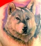 Wolf tattoo by Matteo Pasqualin