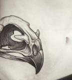 alex tabuns eagle skull tattoo