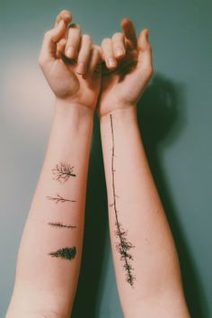 beautiful tattoo placement trees and leaves on inside arms