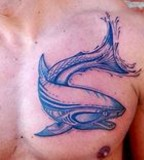 blue ink tattoo shark on chest