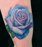 blue rose tattoo