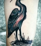 david hale tattoo bird in water