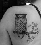 david hale tattoo owl on brach