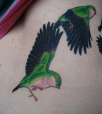 green tattoo flying birds
