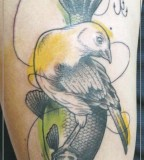 jessica mach tattoo bird and fish