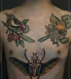 jessica mach tattoo birds on chest and bug on stomach