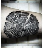 nature tattoo tree growth ring