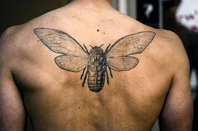 tattoos for men hipster bug tattoo on back