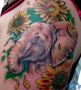 Elephant tattoo by Sean Ambrose