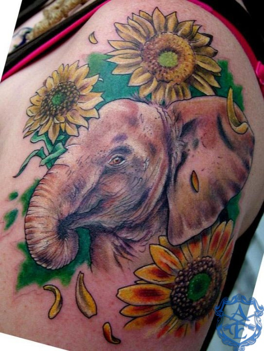 Elephant tattoo by Sean Ambrose