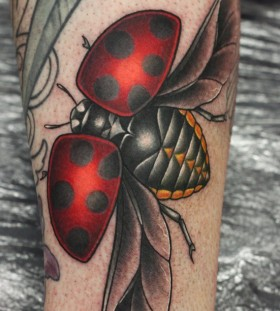 Ladybird tattoo by Michelle Maddison