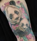Panda tattoo by Michael Norris