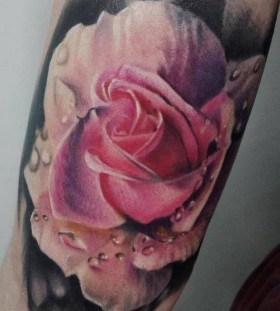 Realisti pink rose tattoo