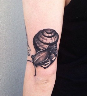 Snail tattoo by Pari Corbitt