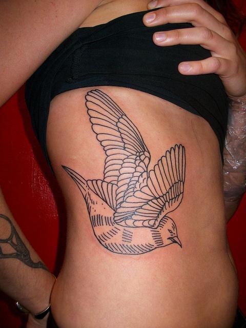liam sparkes tattoo dove line work on ribs