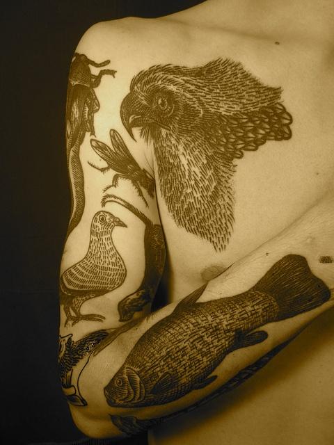 liam sparkes tattoo vivid fauna arm sleeve