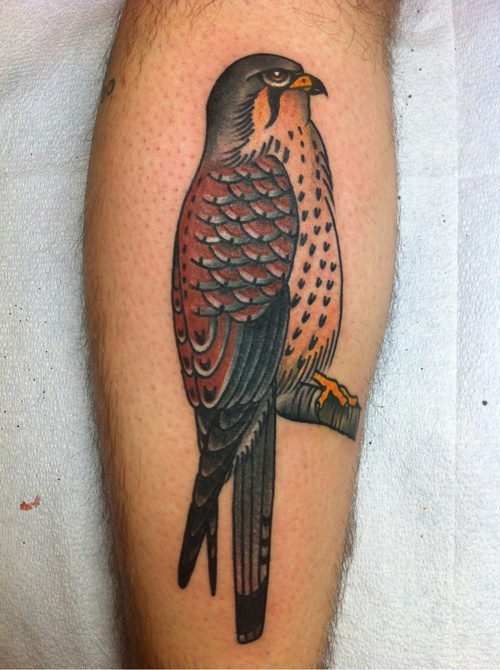 Colorful bird tattoo by Josh Stephens
