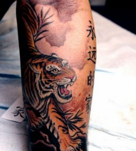 Chinese tiger tattoo by Corey Miller