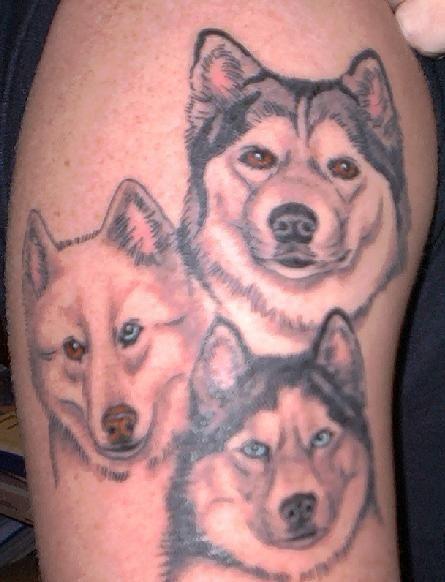 Cutest dog tattoo