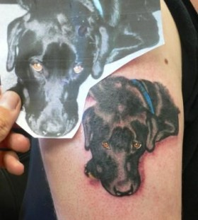 Lonely dog tattoo