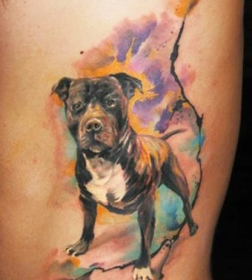 bright color animal tattoos cool dog