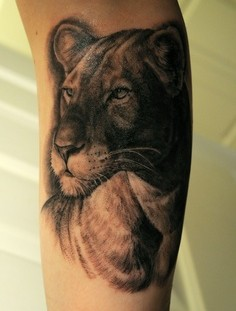 Amazing tattoo of lion