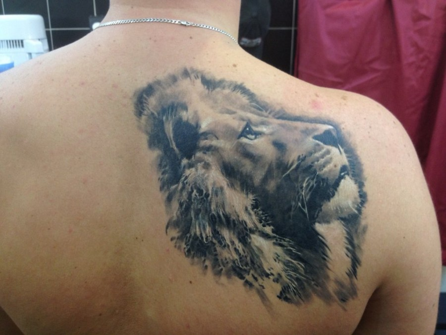 Awesome lion tattoo on the back