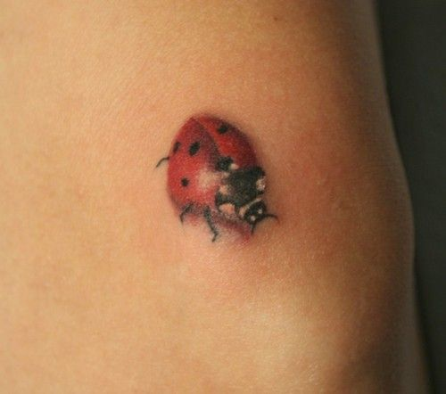 Cute ladybird bug tattoo
